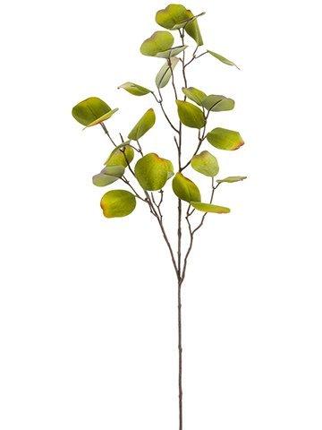 "31"" Eucalyptus Leaf Branch Green Gold"