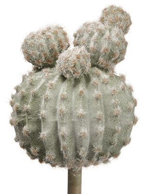 "12"" Glittered Barrel Cactus Pick Green Gray"