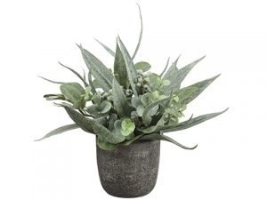 11 Eucalyptus Arrangement in Paper Mache Pot Green Gray