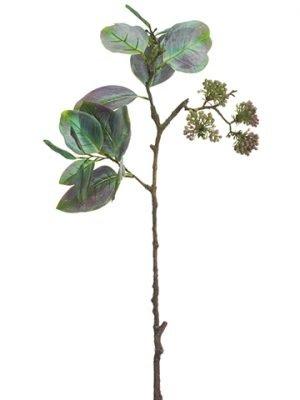 "27"" Eucalyptus Spray WithSeedGreen"