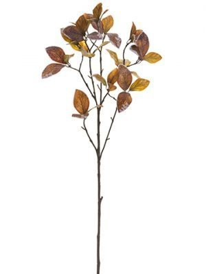 """30"""" Frosted Enkianthus Spray Brown"""
