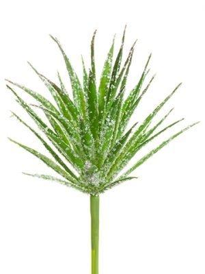 """11"""" Glittered Marginata Pick Glittered Green"""