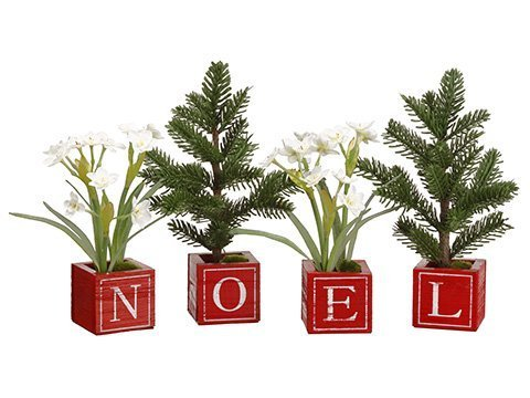 "10""H Paperwhite/Mini Pine Tree in Noel Wood Box (4 ea/set) White Green"