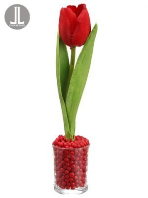 "9"" Tulip in Glass Vase Red"