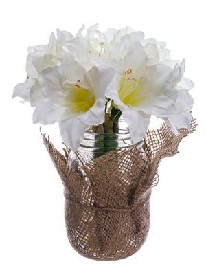 """9"""" Amaryllis in Glass Jar White"""