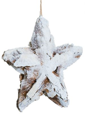 "9"" Snowed Faux Bark Star Ornament Brown Snow"