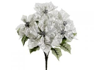 "19.5"" Poinsettia Bush x5 Platinum"