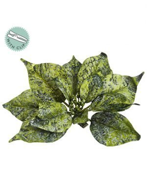 "9"" Glittered Poinsettia With Clip Green Gold"