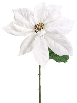 "14"" Velvet Poinsettia Pick White"