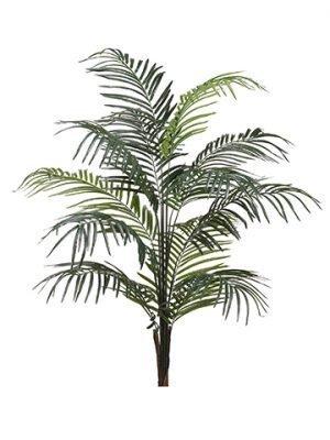 "60"" Dwarf Areca Palm Tree x12w/476 LeavesGreen"