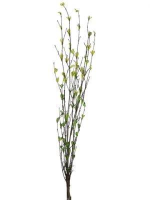"26"" Bamboo Branch x7Green"
