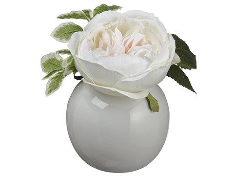 """6.5"""" Open Rose in Ceramic VasePeach Cream"""