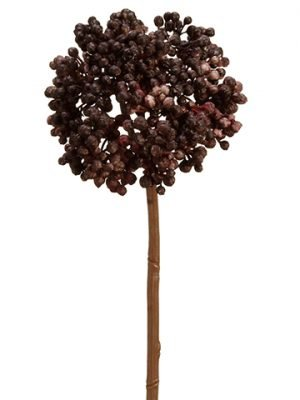 "10.5"" Sedum Stem Black"
