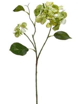 "15"" Mini Hydrangea Spray Green"
