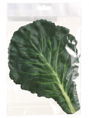 "11"" Cabbage Leaf (5 ea/bag) Green Cream"