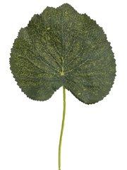 "9"" Galax Leaf PickGreen"