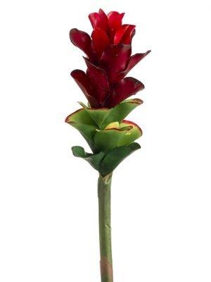 """28"""" Ginger Flower Spray Red"""