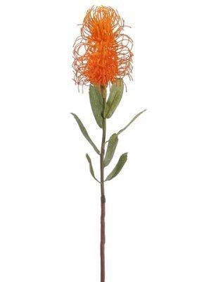 """24"""" Pincushion Protea Spray Orange"""