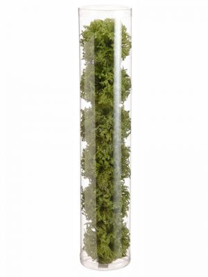 "2"" Moss Orb (6 ea/acetate box) Green"