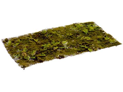 """10""""W x 19""""L Moss/Fern Sheet Green"""