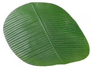 "19""W x 16""L Banana Leaf Placemat Green"
