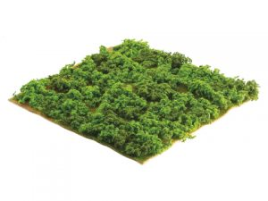 "14""W x 14""L Square Mountain Sphagnum Moss Sheet Green"