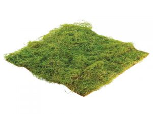 "14""W x 14""L Square Water Sphagnum Moss Sheet Green"