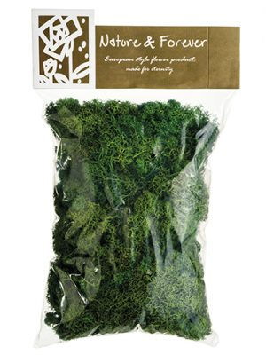 "10.5"" Assorted Preserved Reindeer Moss in Bag (170 Grams/Bag) Green"