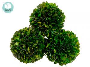 "4.3""D Preserved Boxwood Ball(3 ea/acetate box)Green"