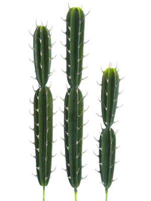 "17.5"" - 25.5"" Soft PeruvianCactus (3 Assorted/set)Green"