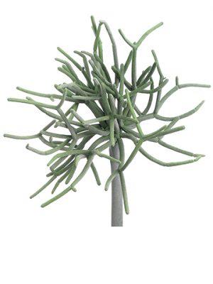 "8"" Pencil Cactus Pick Green Gray"