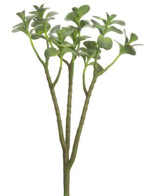 "17"" Jade Plant Spray Green"