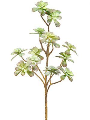 "15"" Soft Echeveria Pick Green Gray"