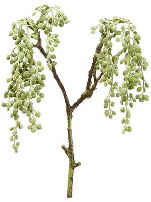 "19"" String of Pearls Spray Green Gray"
