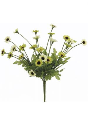 "10.5"" Daisy BusH x 5 Two Tone Green"