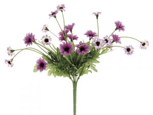 "10.5"" Daisy BusH x 5 Two Tone Purple"