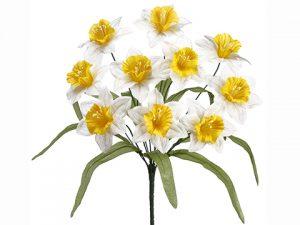"17"" Daffodil BusH x 10 Yellow Cream"
