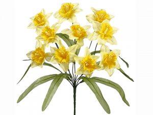 """17"""" Daffodil BusH x 10 Two Tone Yellow"""