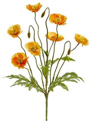 """15"""" Poppy BusH x 6 Orange"""