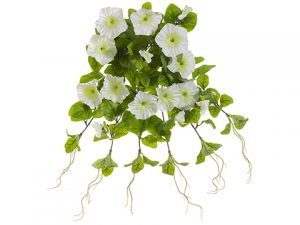 "20"" UV Protected Petunia Hanging BusH x 12 White"