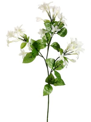 "27"" Stephanotis Spray x3 White"