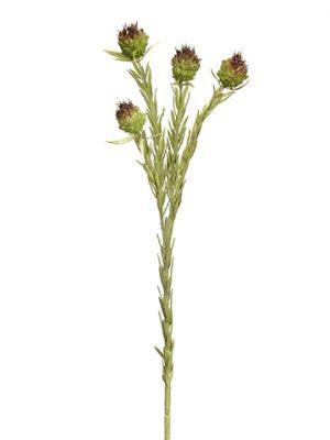 "22"" Mini Allium Spray x4 Green Brown"