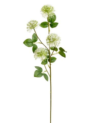 """29"""" Allium Spray White"""