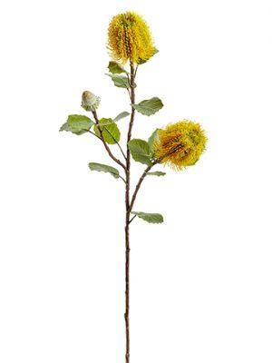 "28"" Banksia Spray Yellow"