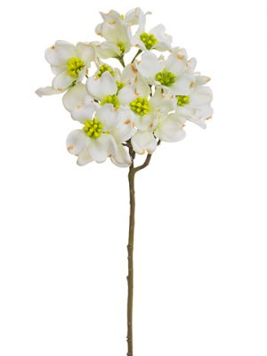 "17"" Dogwood Spray White"