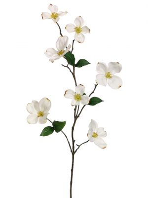 "29"" Dogwood Spray Cream"