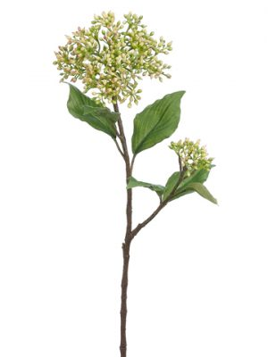 "20"" Dogwood Seed Spray Green Cream"