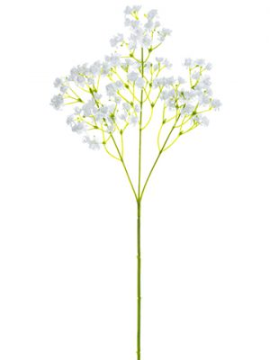 "16"" Gypsophila Spray White"