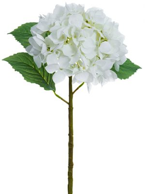 "19"" Real Touch Hydrangea Spray White"
