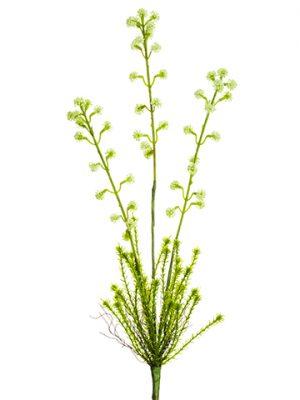 "21"" Horseweed Plant Spray Cream"